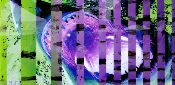 SHARK_Green&Purple_BH4_2A_web